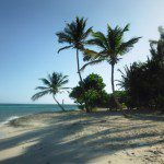Tobago Cays | Bluewater Sailing | RYA